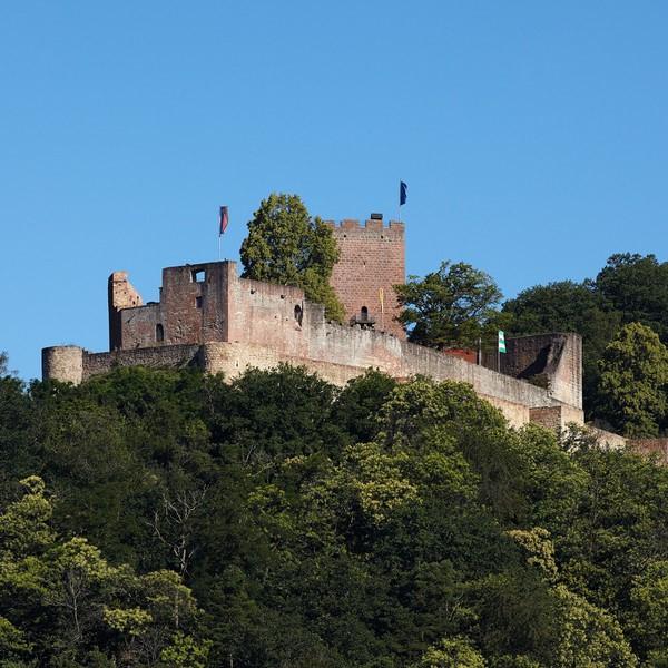 Burg Landeck © GDKE